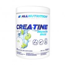 Creatine Muscle Max  500g, AllNutrition