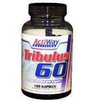 Tribulus-60 120 капс Actiway